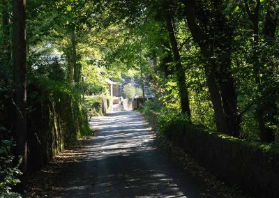 Gallery-Bed-and-Breakfast-Matlock-39