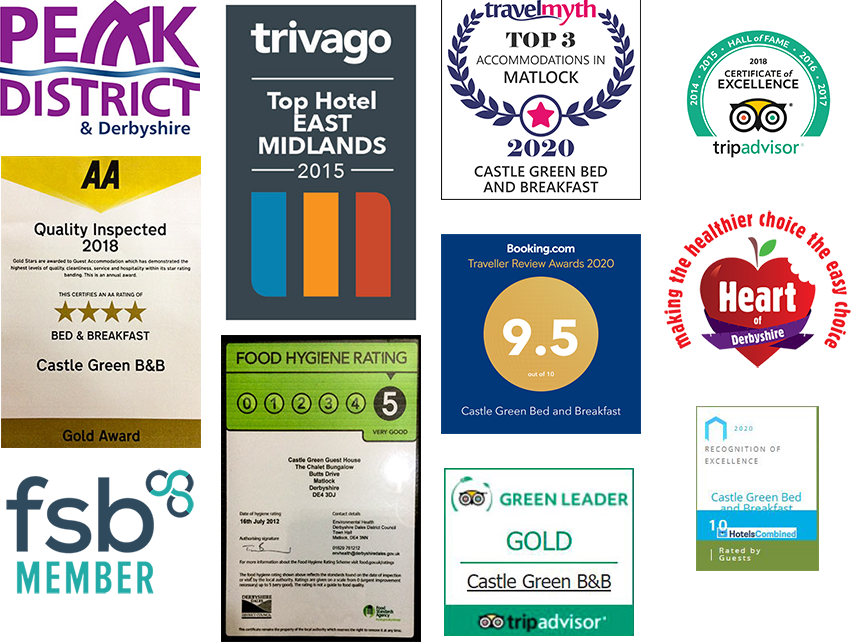 Castle Green award-winning logos