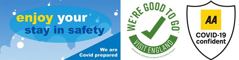 We're Good to Go logo, AA & Covid prepared